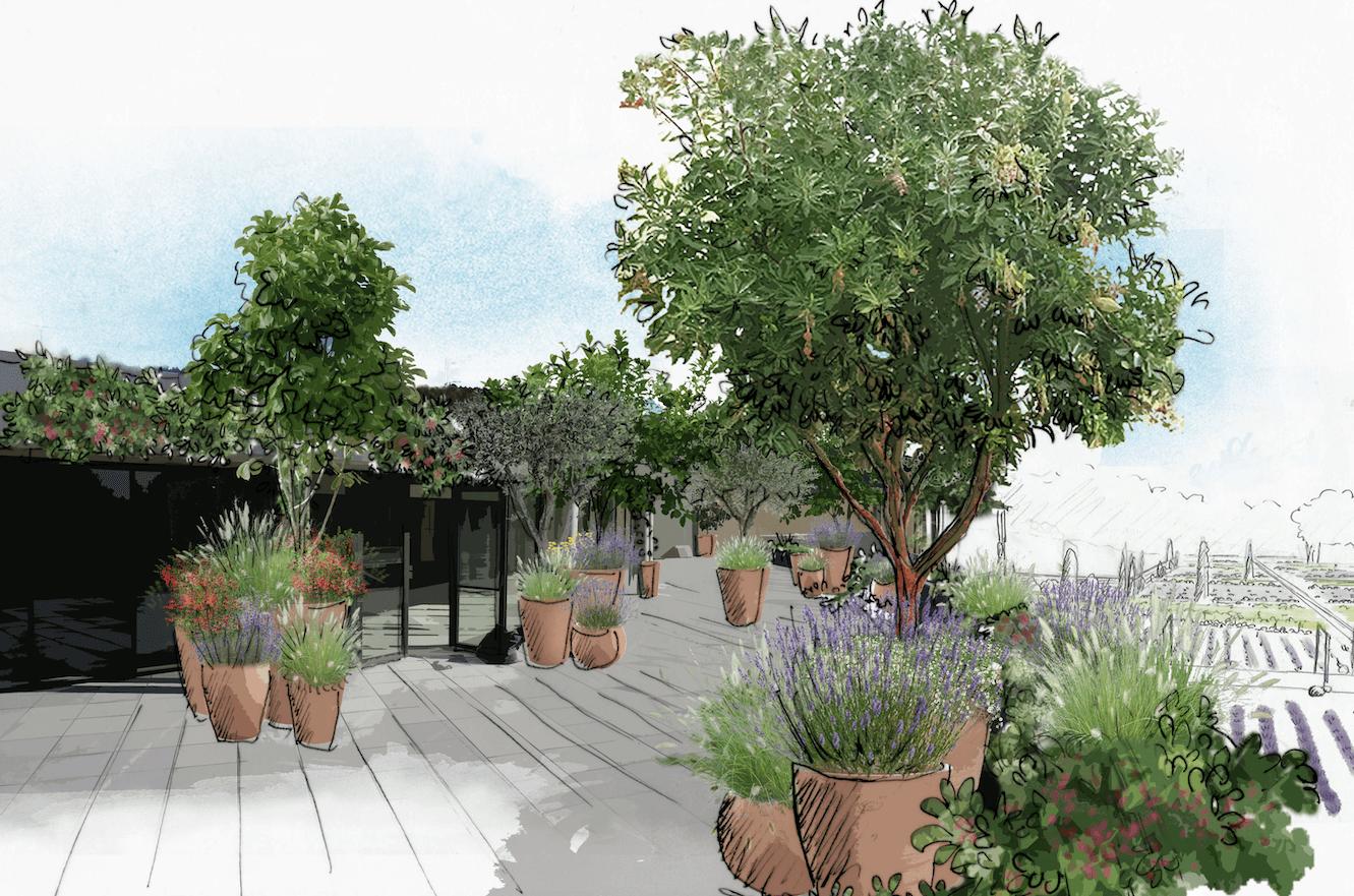 Aménagement d'un toit terrasse © Rc-Paysage