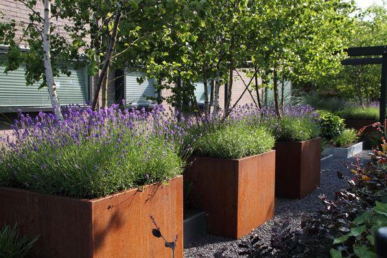 Jardin et jardinières en acier corten