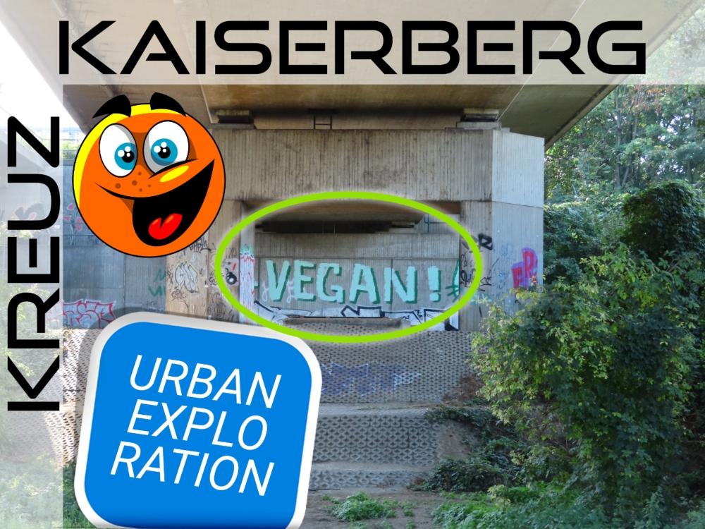 Rock'n Roll am Kaiserberg