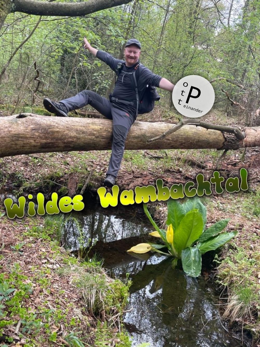 Wildes Wambachtal!