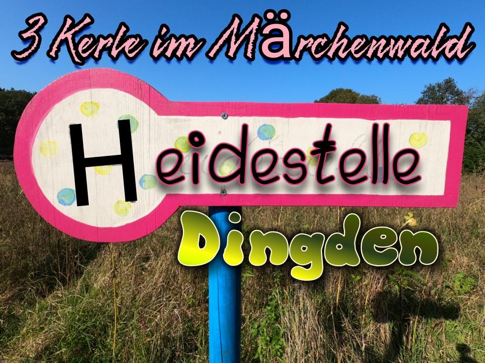 Die Dingdener Heide in Hamminkeln.