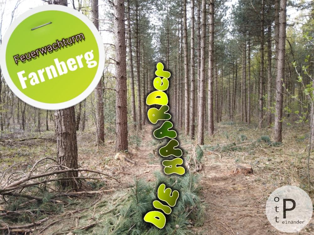 DIE HAARDer - Rundwanderweg