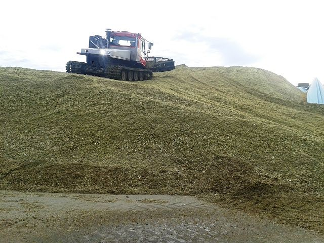 Pistenbully in seinem Element