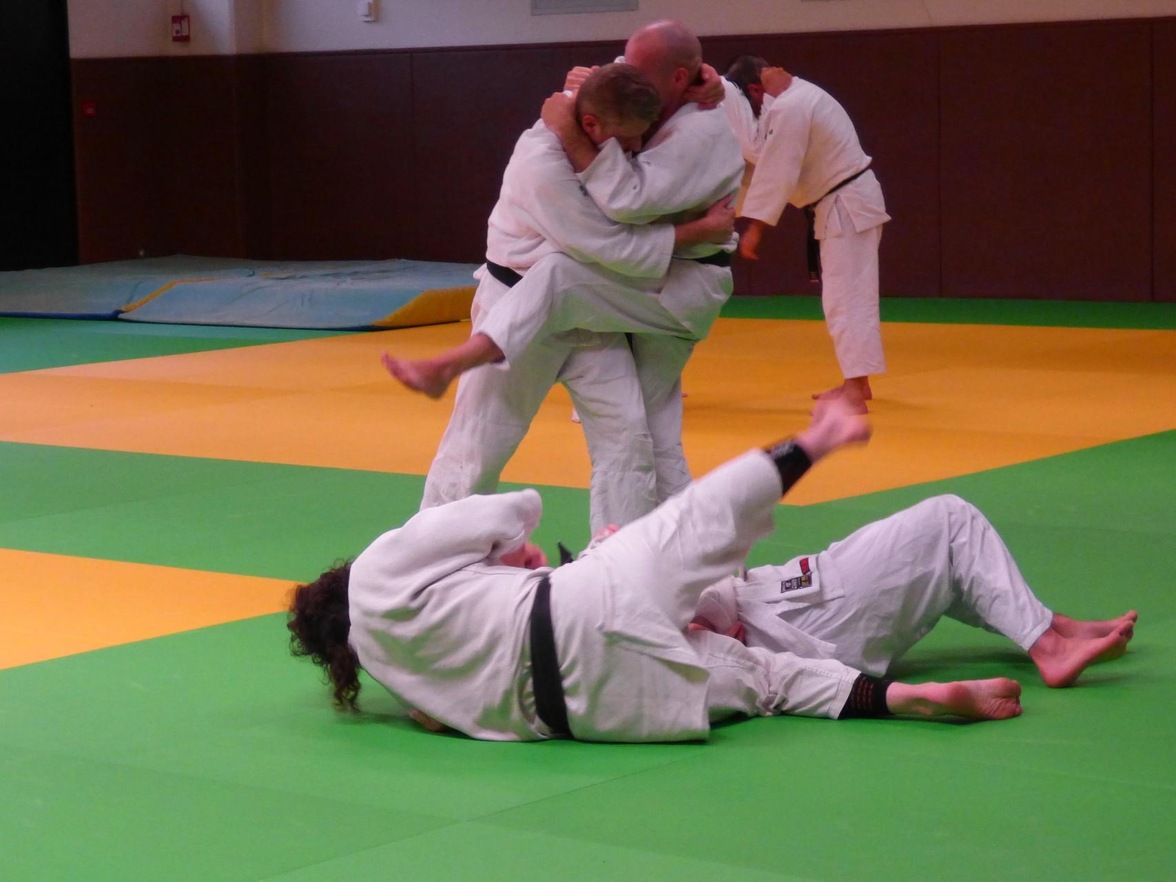 Stage d'étude sports de combat, défense avec Christophe Saint Agathe et Luc Mathevet 20 12 2014