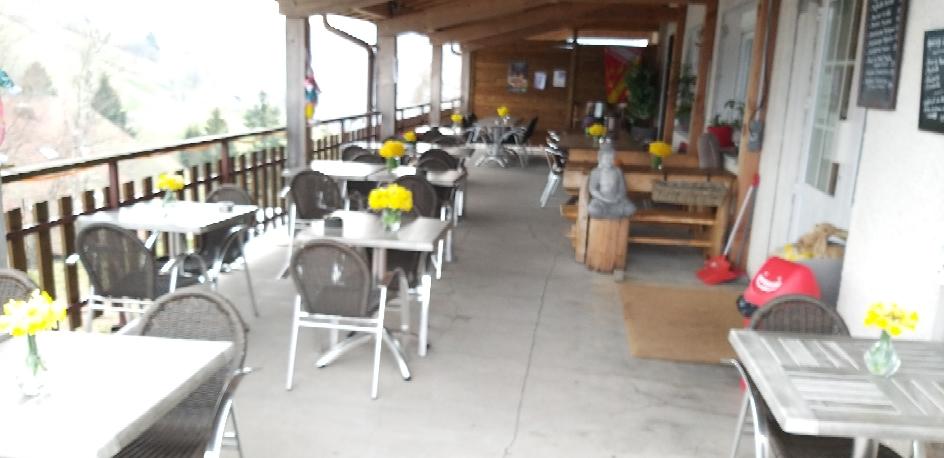 Notre terrasse avec les jonquilles du Brabant 😀
