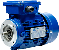 motor Ditra. Spare parts Ditra gearbox. Ditra gearmotors and gearboxes. Ditra catalog.