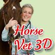 Title Info Graphic Horse Vet 3D