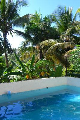 Pool und Natur