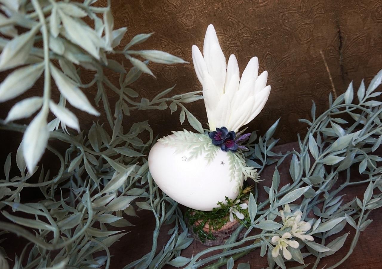 森にある卵