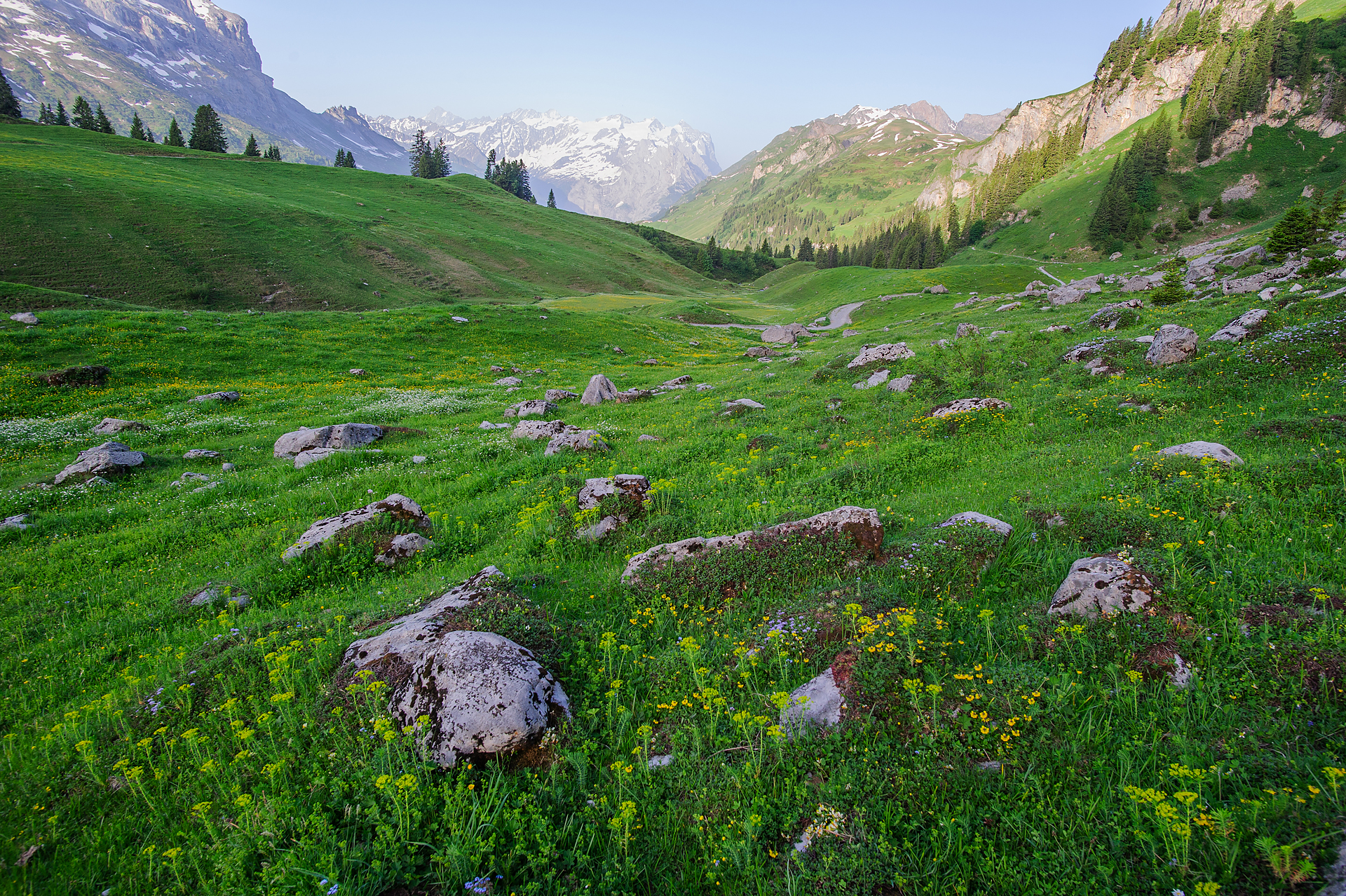 Bernese alps Switzerland
