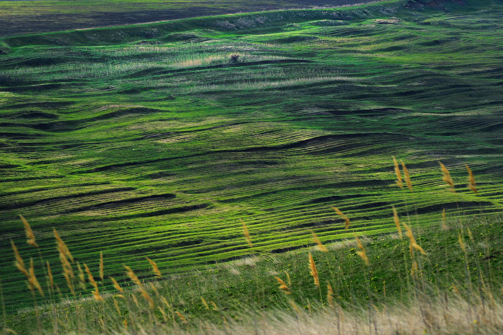 Plugged Steppe Romania