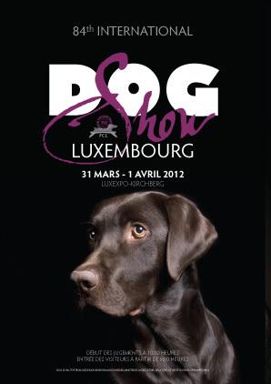 Hundeaustellung auf dem Kirchberg Luxemburg ( Ausstellungshallen)