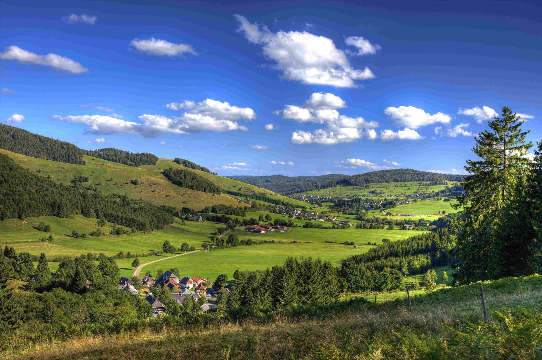 """Discover the Black Forest with it`s biggest waterfalls in Germany, Titisee, """"Vogtsbauernhöfe"""" or biggest cuckoo clock on earth"""