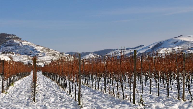Der Kaierstuhl ist auch im Winter bei Wanderfans begehrt.