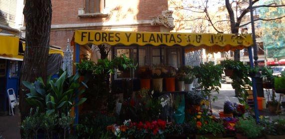 Центральный рынок города Валенсия