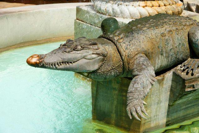 Ним (Франция), город крокодилов