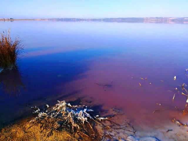 Салинас - розовые озёра Торревьехи