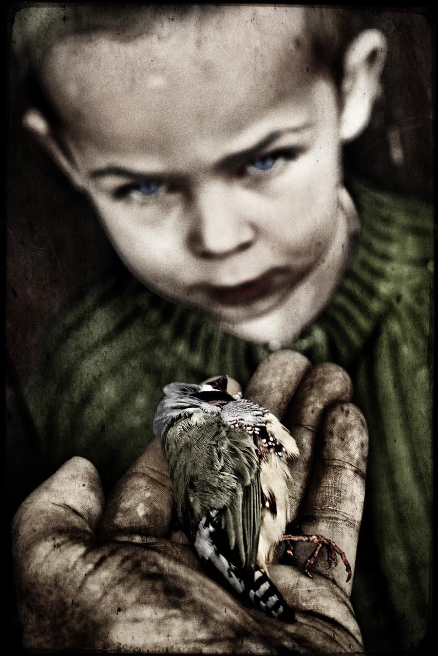 Jorris Martinez-L'oiseau et l'enfant