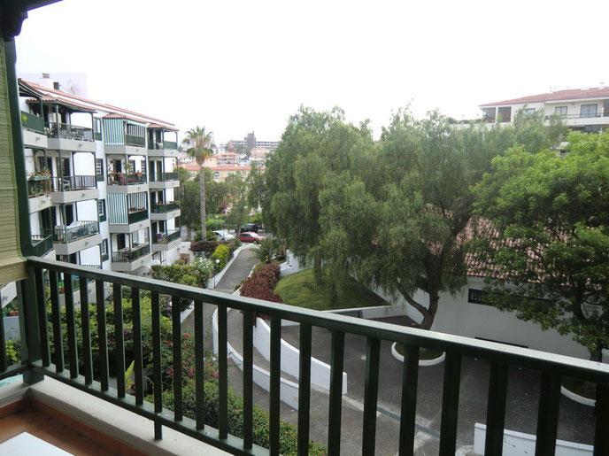 Blick vom grün gestrichenen Balkon auf die Umgebung der Wohnung mit Bäumen und bepflanzten Grünstreifen der Strasse.