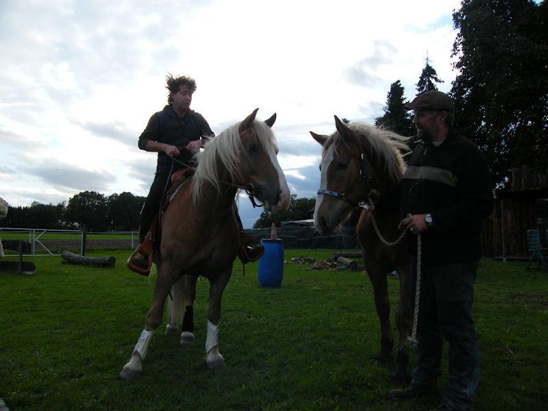 16. September - Tex trifft Songan (Kaltblutnachwuchs)