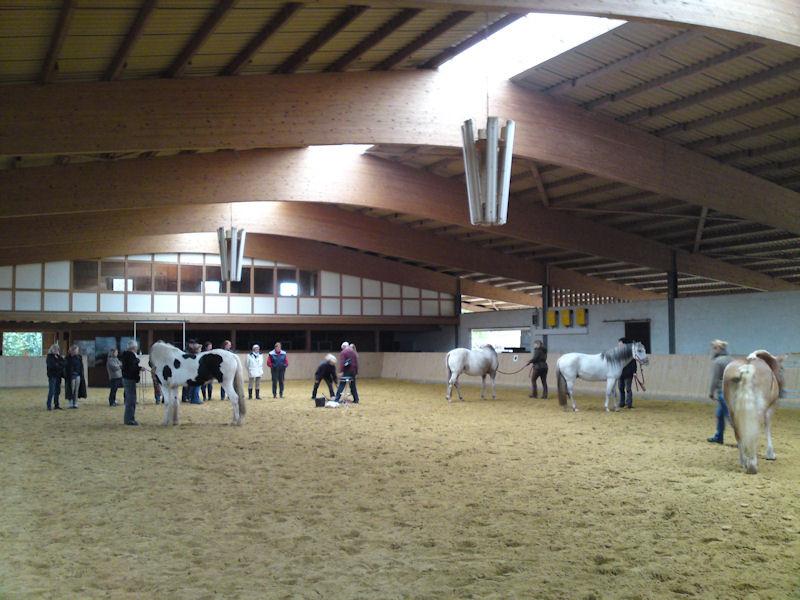 Die wunderschöne Horseshome-Reithalle... unser Spielplatz an diesem Wochenende