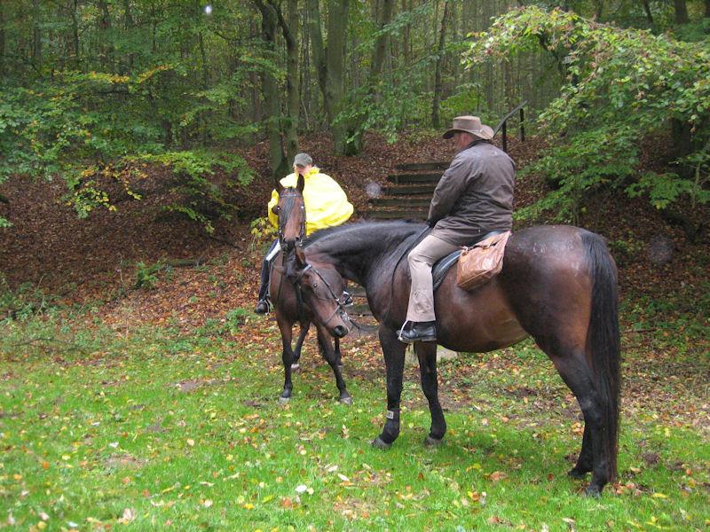 Nur wir Pferde mußten ungeschützt dem Regen trotzen. Ist irgendwie immer dasselbe... :-(
