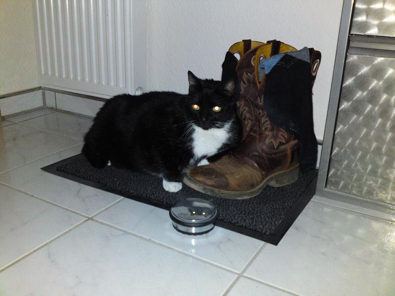 15. Oktober - Das ist Piet´s Lucy... und sie liebt Stiefel!
