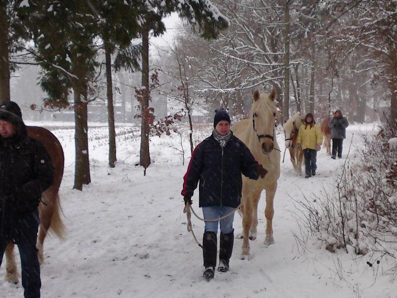02. Januar - Spaziergang im Schneesturm