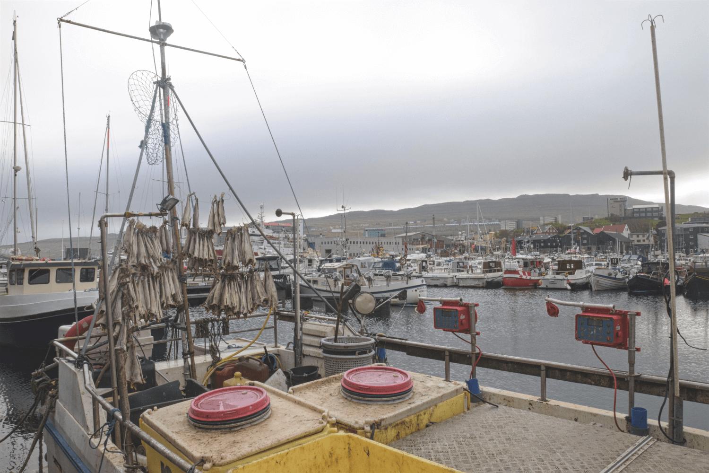 Fischerboote im Hafen von Tórshavn