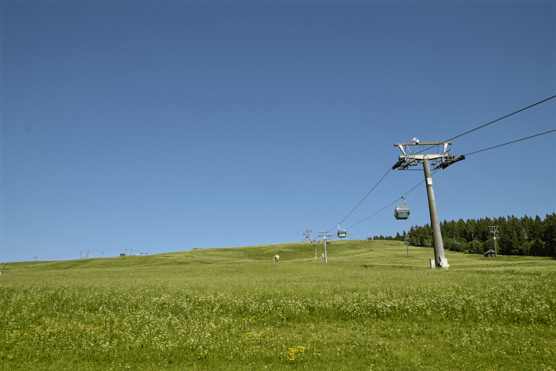 Goldelfahrt auf den Feldberg