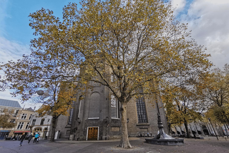 Die Grote Kerk von Zwolle