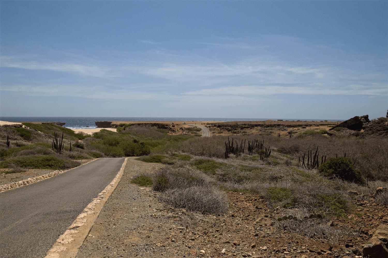 Eine Fahrt durch den Arikok NP lohnt sich (im Hintergrund ist der Boca Prins-Strand zu erkennen)