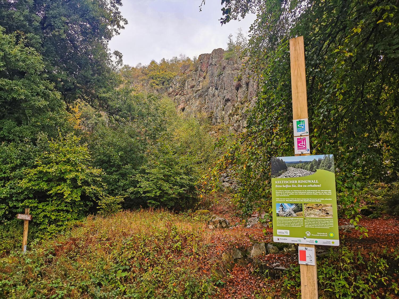 Wandern im Nationalpark Hunsrück-Hochwald