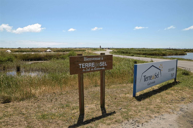 Führungen durch die Salinen gibt es u.a. bei Terre de Sel