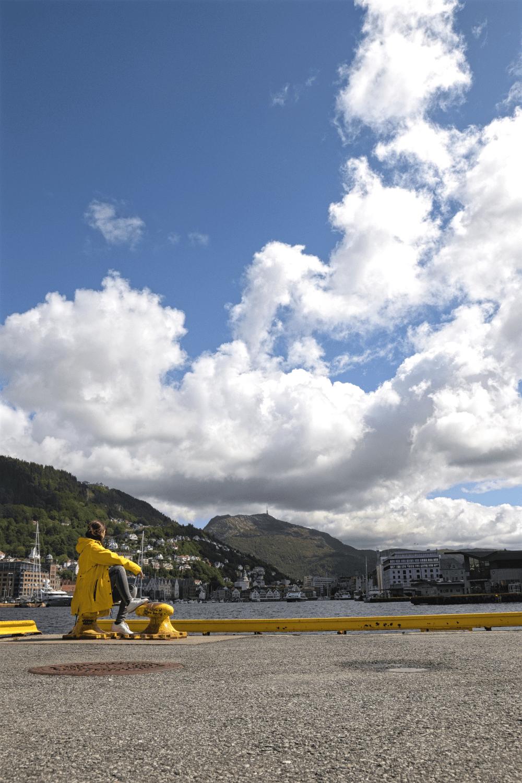 Bryggen, Hafen, Fløyen auf einen Blick