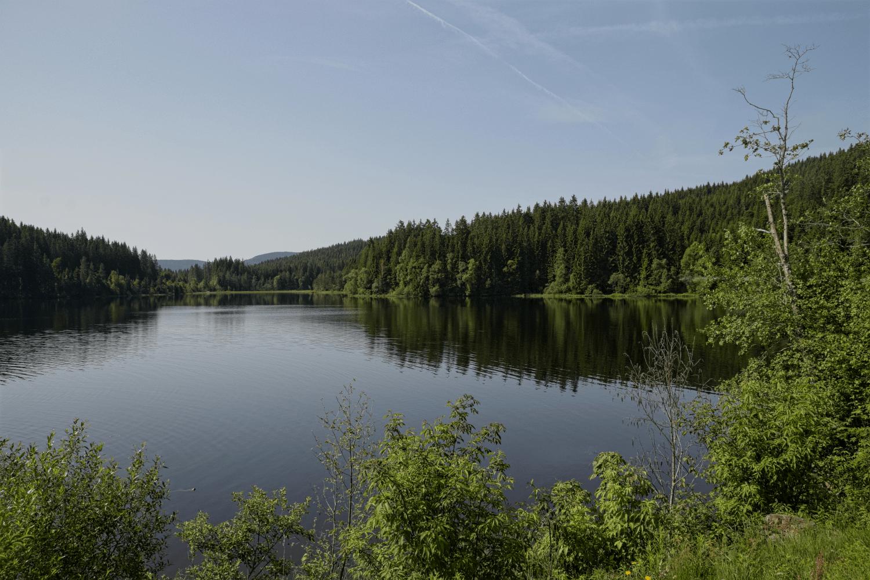Windgfällweiher