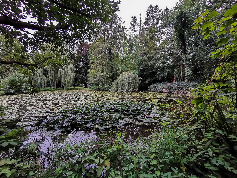 Levin Park