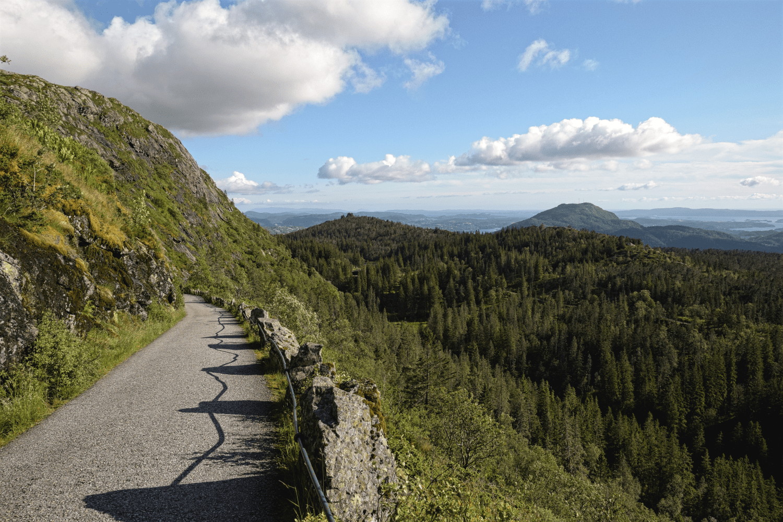 Der Aufstieg zum Gipfel des Fløyen