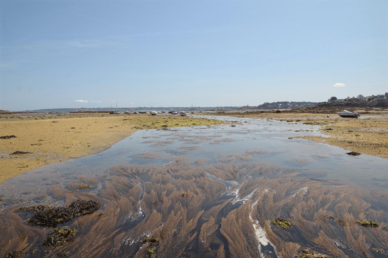 Wasserspiegelungen bei Ebbe
