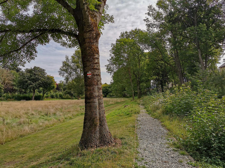 Apenke-Park