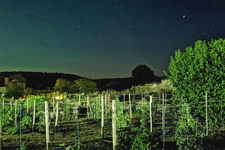 Klarer Sternenhimmel im Loire Tal.