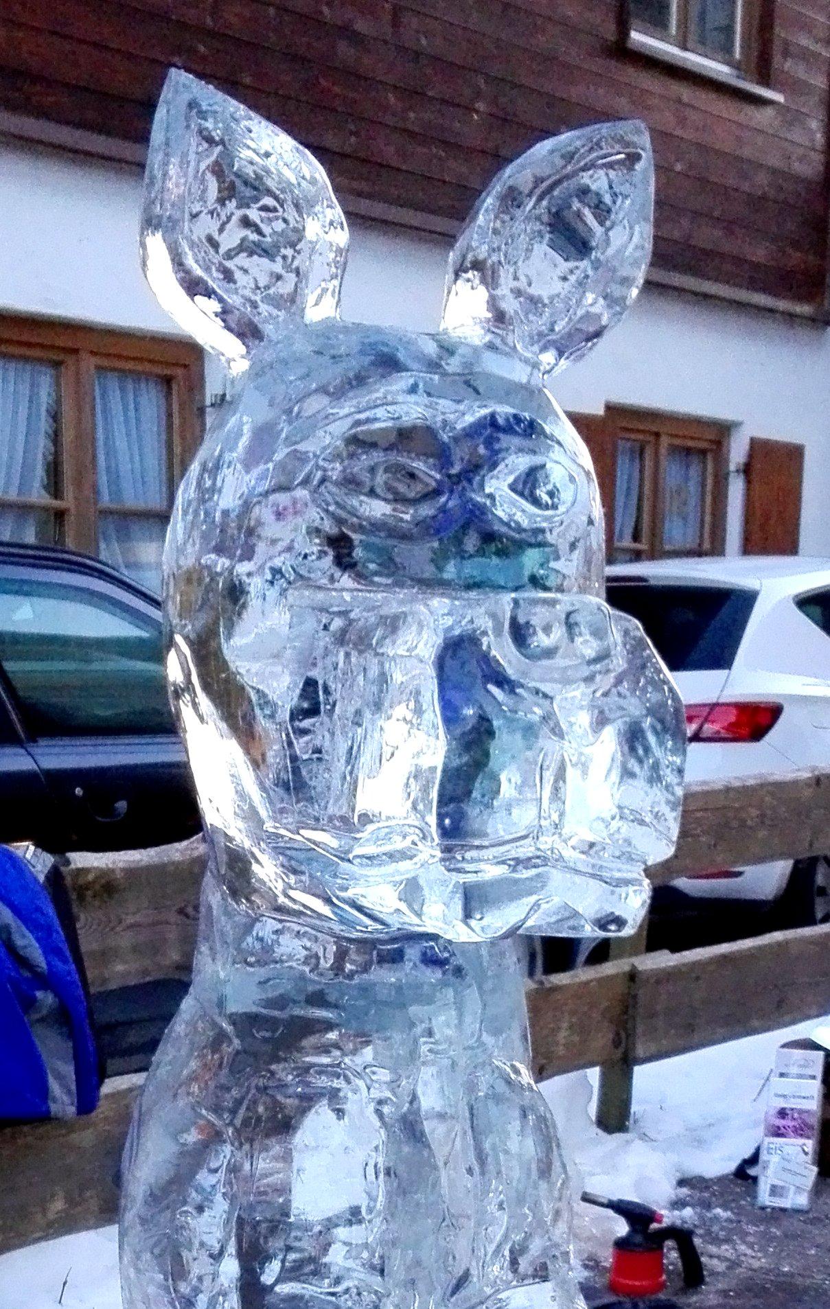 Oberstdorf 2017 Doge