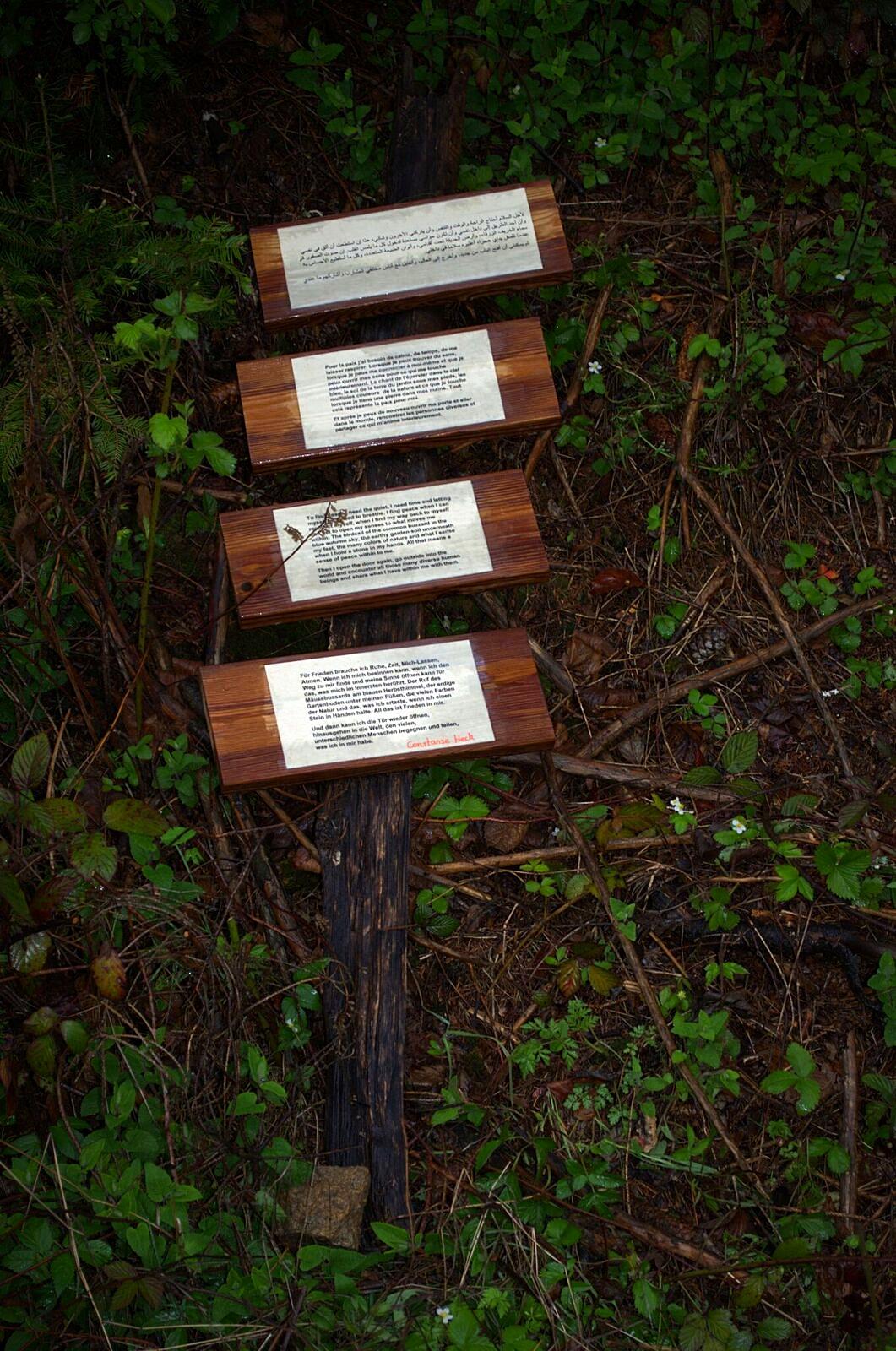 Text zu # 5 | Constanze Heck, Untermaubach
