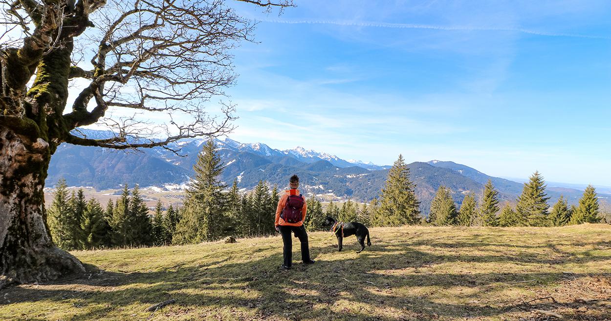 Die Hörnle, Unterammergau, Bayern