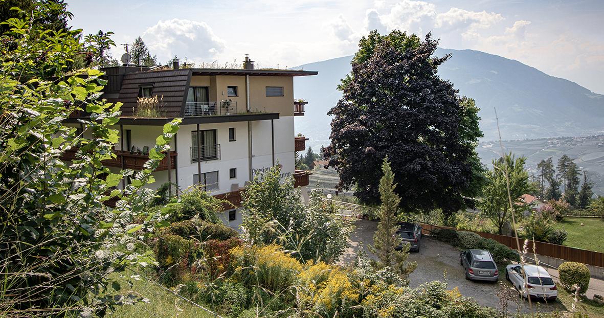 Pension Hahnenkamm, Schenna, Meran, Südtirol
