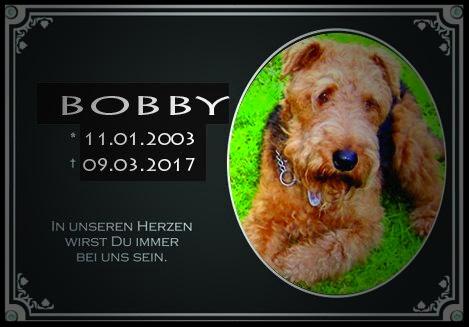 Bobby (pitbyte)