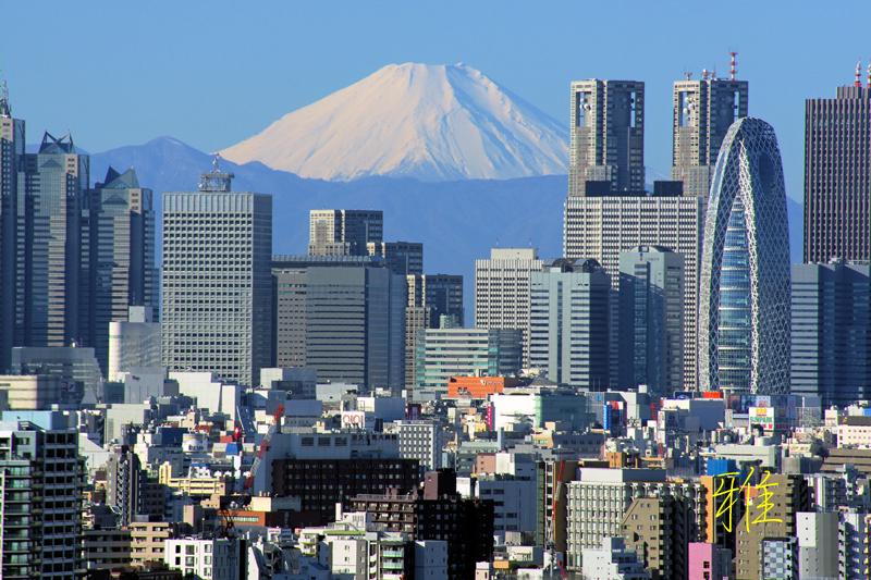 新宿高層ビル群と富士山Ⅰ