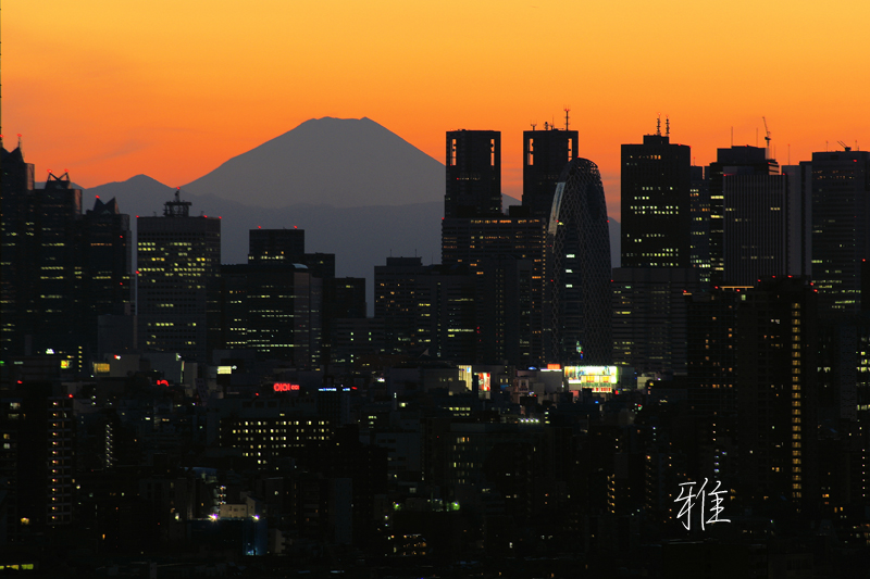 新宿高層ビル群と富士山Ⅱ