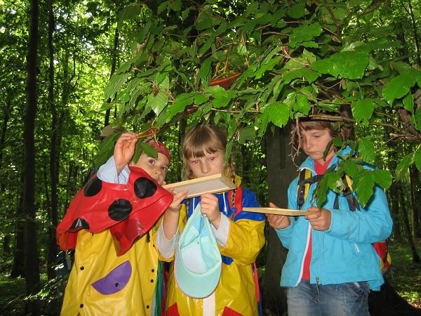 Hainichwanderung Kinderchor 20077