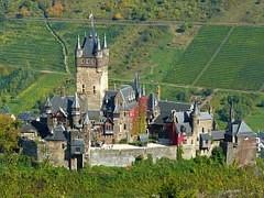 Burg Cochem und Weinberge - Panorama für Weinwanderungen und Weinseminare von World of Boutique Wines